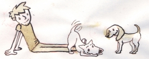 Dog Sketch 1