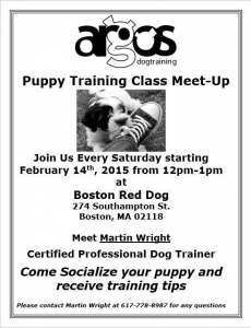 Puppy Class Meet Up