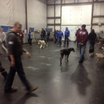 dog training workshop2