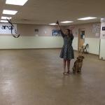 off-leash dog training
